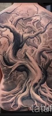 Фото тату дерево – рисункb для тату 09122015 № 102