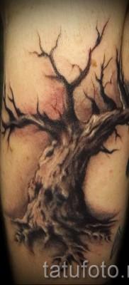 Фото тату дерево – рисункb для тату 09122015 № 103