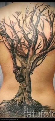 Фото тату дерево – рисункb для тату 09122015 № 120