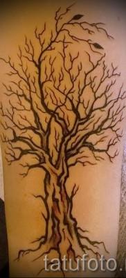 Фото тату дерево – рисункb для тату 09122015 № 123