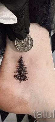 Фото тату дерево – рисункb для тату 09122015 № 124