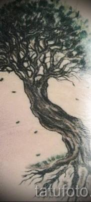Фото тату дерево – рисункb для тату 09122015 № 136