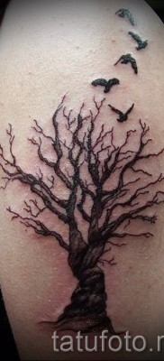 Фото тату дерево – рисункb для тату 09122015 № 138