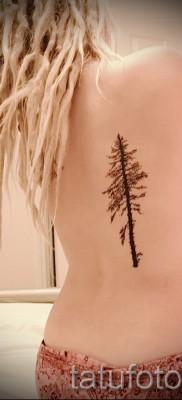 Фото тату дерево – рисункb для тату 09122015 № 166
