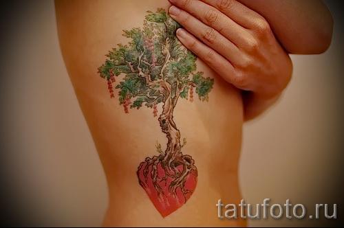 Фото тату дерево - рисункb для тату 09122015 № 170