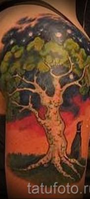 Фото тату дерево – рисункb для тату 09122015 № 173