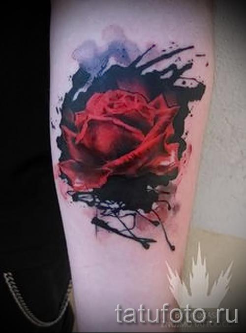 роза акварель тату - фото вариант от 15122015 № 7