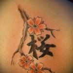 сакура и иероглифы тату - фото пример от 12122015 № 2