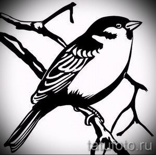 тату воробей - фото примеры татуировки от 07122015 12