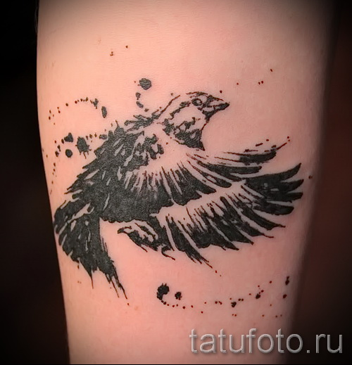 тату воробей - фото примеры татуировки от 07122015 14