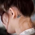 тату ласточка за ухом - фото пример 3