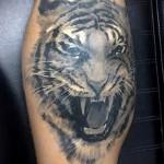 тату на икре ноги тигр - фото пример от 20122015 № 5