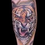 тату на икре ноги тигр - фото пример от 20122015 № 7