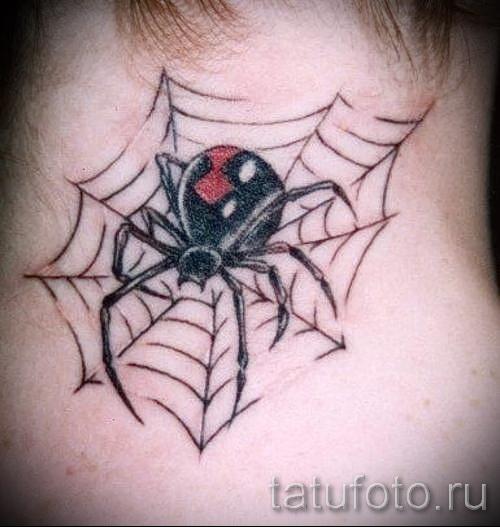 тату паук на паутине - фото готовой татуировки - 20122015 № 11