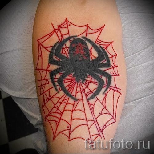 тату паук на паутине - фото готовой татуировки - 20122015 № 28