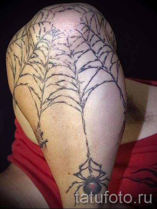 тату паук на паутине - фото готовой татуировки - 20122015 № 9