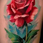 тату роза реализм - фото вариант от 15122015 № 1