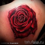 тату роза реализм - фото вариант от 15122015 № 3