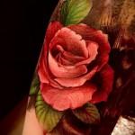 тату роза реализм - фото вариант от 15122015 № 4