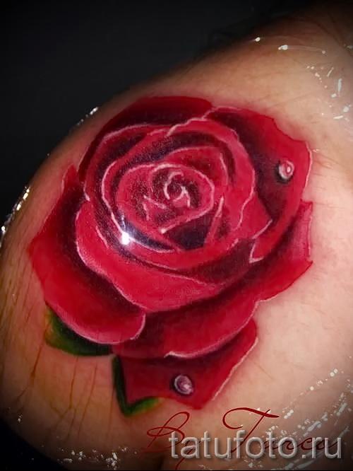 тату роза реализм - фото вариант от 15122015 № 7