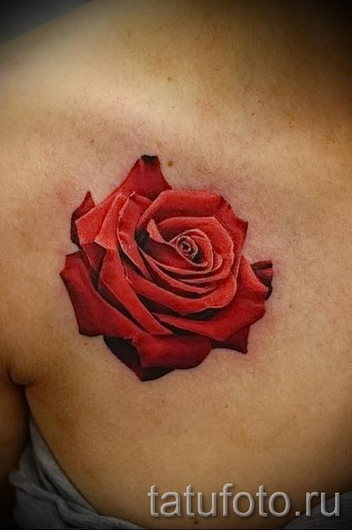 тату розы на ключицах - фото вариант от 15122015 № 5