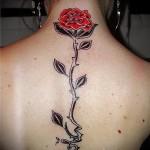 тату розы на спине - фото вариант от 15122015 № 11