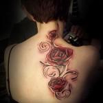 тату розы на спине - фото вариант от 15122015 № 3