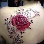 тату розы на спине - фото вариант от 15122015 № 9