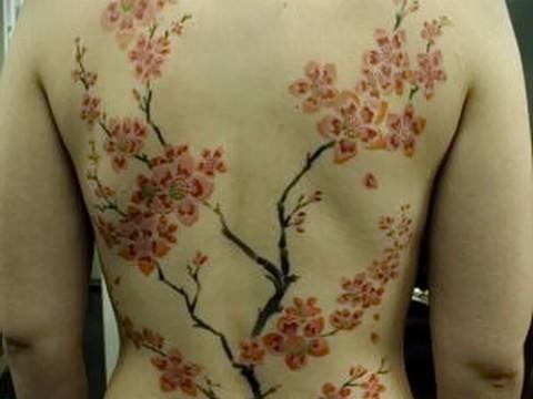 тату сакура на спине - фото пример от 12122015 № 12