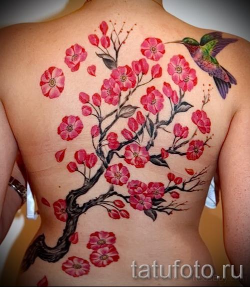 тату сакура на спине - фото пример от 12122015 № 15