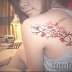 тату сакура на спине - фото пример от 12122015 № 9