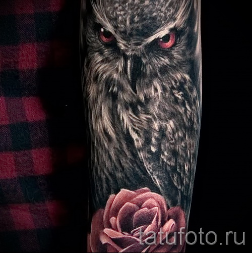 тату сова с розами - фото вариант от 15122015 № 3