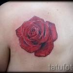 тату цветы на лопатке - фото вариант от 21122015 № 1