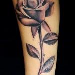 черная роза тату - фото вариант от 15122015 № 4