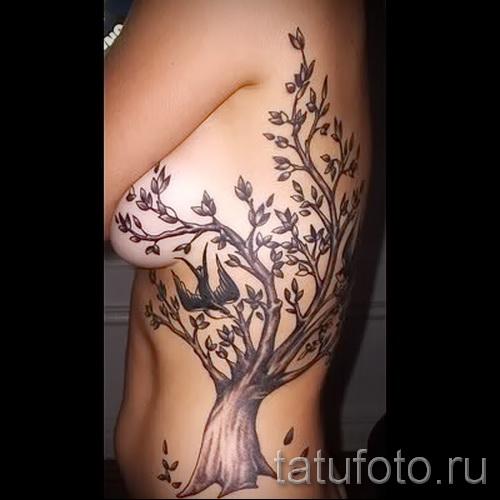 Фото тату дерево - рисункb для тату 09122015 № 036