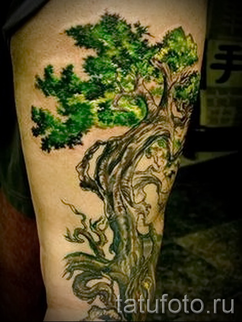 Фото тату дерево - рисункb для тату 09122015 № 066