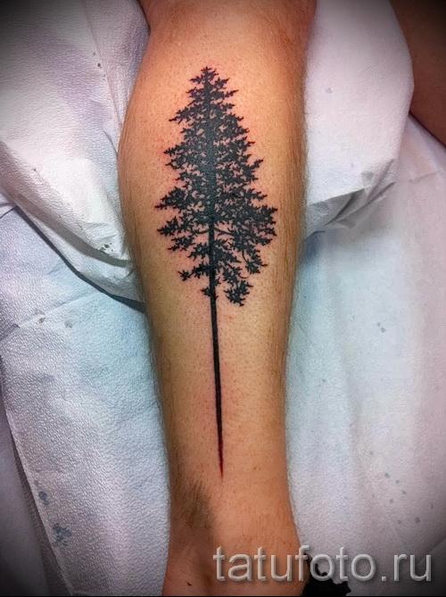 Фото тату дерево - рисункb для тату 09122015 № 100