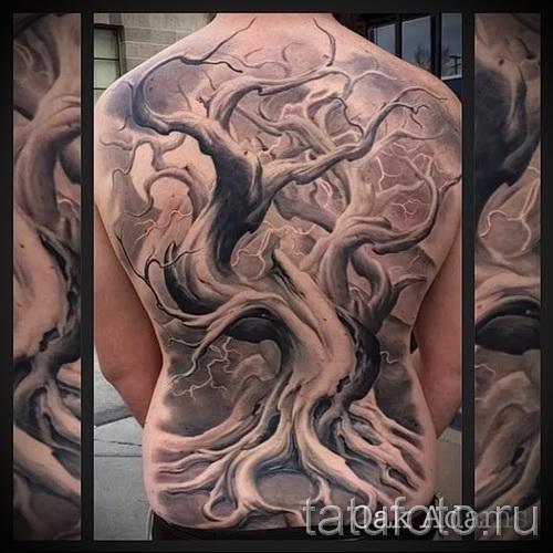 Фото тату дерево - рисункb для тату 09122015 № 102