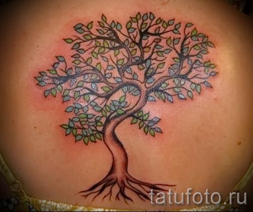 Фото тату дерево - рисункb для тату 09122015 № 134