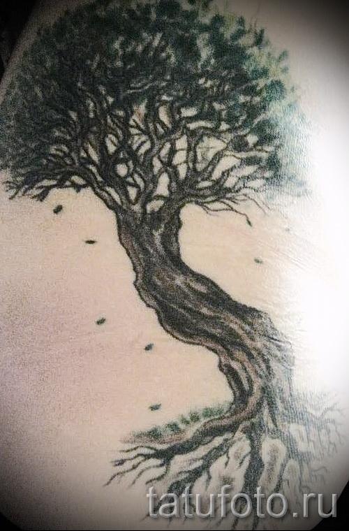 Фото тату дерево - рисункb для тату 09122015 № 136