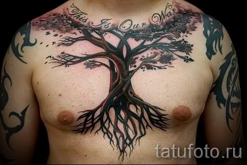 Фото тату дерево - рисункb для тату 09122015 № 145