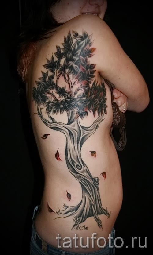 Фото тату дерево - рисункb для тату 09122015 № 161