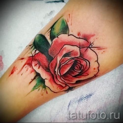 роза акварель тату - фото вариант от 15122015 № 2