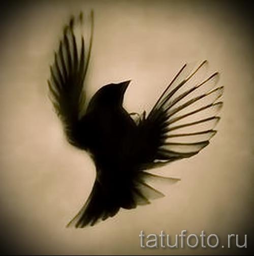 тату воробей - фото примеры татуировки от 07122015 11