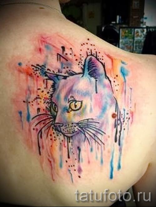 тату кошки в цветах фото- фото вариант от 21122015 № 1