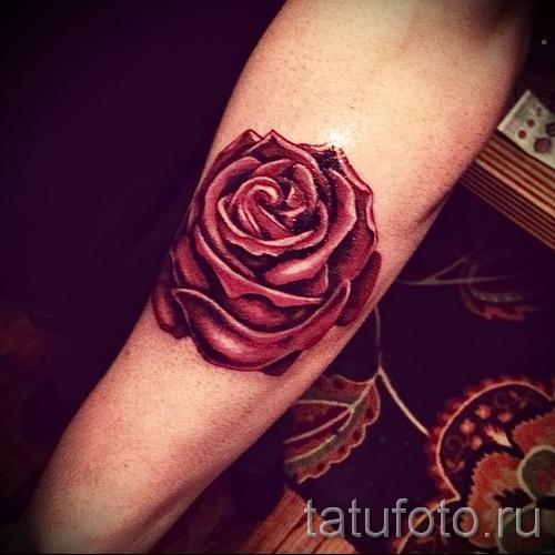 тату красная роза - фото вариант от 15122015 № 6