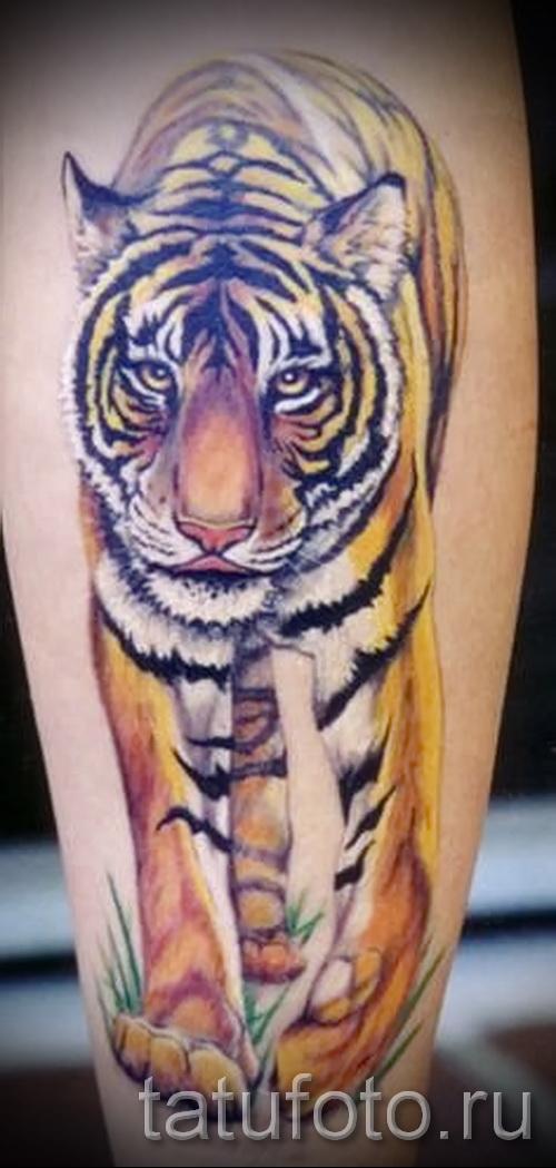 тату на икре ноги тигр - фото пример от 20122015 № 9
