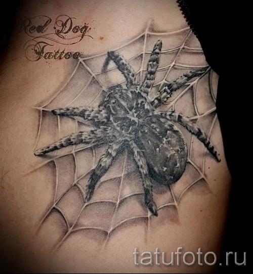 тату паук на паутине - фото готовой татуировки - 20122015 № 2