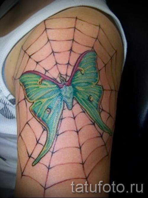 тату паутина на плече - фото готовой татуировки - 20122015 № 11