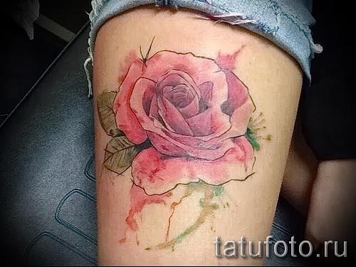 Picture-Option aus dem Nummer 15122015 - Aquarell tattoo rose 2